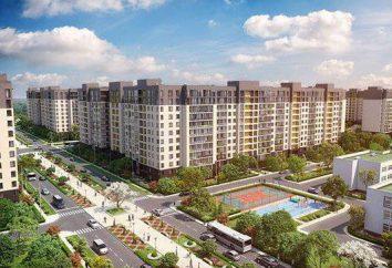 complejos residenciales de San Petersburgo de diferentes desarrolladores: una comparación