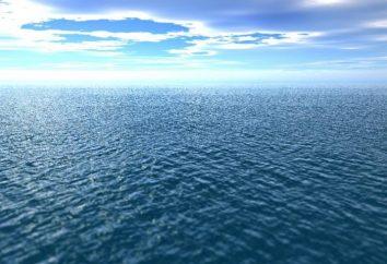 Quanti oceani sulla Terra: contesta circa il numero esatto