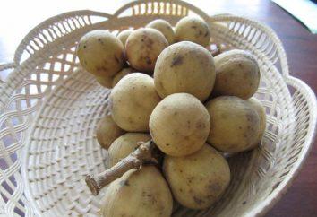 Jaką longan owoców, gdzie jest uprawiana, jak jeść i jak to jest użyteczne