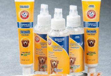 Pasta do zębów dla psów: wybór opinii