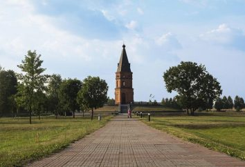 Buinichi field – memoriał złożony. Obrona Mohylewie
