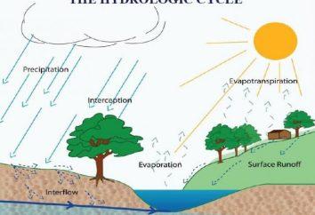 Jaki jest stosunek wilgoć i jak to określa?