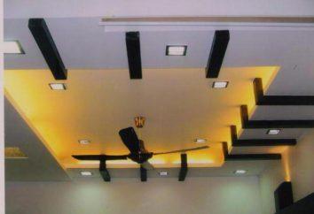 Falshbalki techo: qué material a elegir?