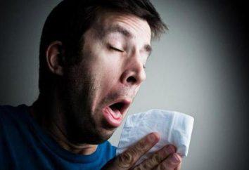 Grippe A – quel est-il? Grippe A et B: symptômes et traitement