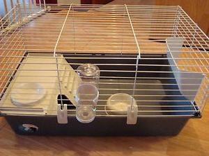 Cuáles deben ser las células para conejos decorativos?