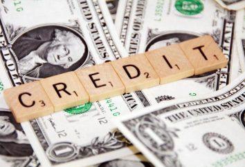 Które banki udzielają pożyczek bezrobotnym? Pożyczka bezrobotnemu pod paszportem