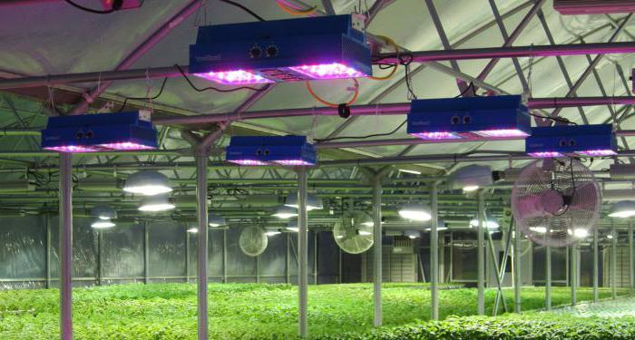 Illuminazione led orchidee illuminazione led per piante nuove