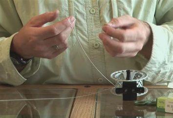 Comment attacher une ligne à une bobine: moyens et astuces