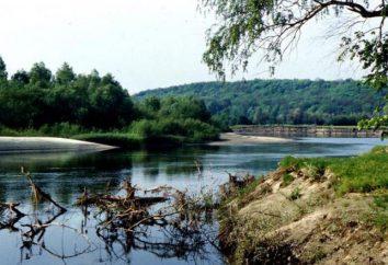 Psel – Rzeka East European Plain. opis geograficzny, gospodarcze wykorzystanie i zabytki