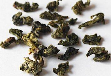 """chá Oolong """"Guan Yin"""": o efeito dos métodos de cocção, a cultura de beber"""