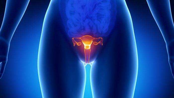 Warum verletzt die Ovarien während der Menstruation?