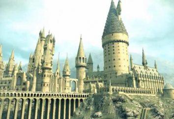 Hogwarts: dove è davvero il caso?