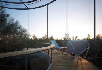 projet étonnant: une maison de verre avec un arbre à l'intérieur