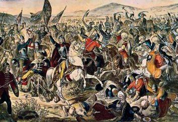 Croates et Serbes: contraste, l'histoire des conflits, des faits et des caractéristiques intéressantes de caractère