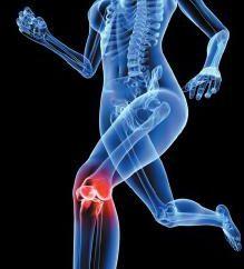 Das Kniegelenk. Bandruptur: das Ausmaß der Schäden und Behandlungen