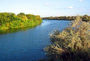 rivière Irgiz région de Saratov: description, caractéristiques, photos
