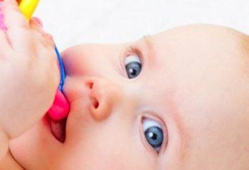 I primi denti nei bambini: quando compaiono?