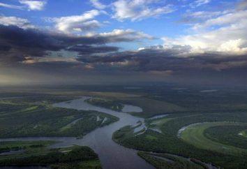 An welchem Fluss lohnt Novosibirsk? Welcher Fluss fließt in Novosibirsk?