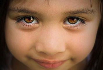 Brązowe oczy – jest to powód do zaufania