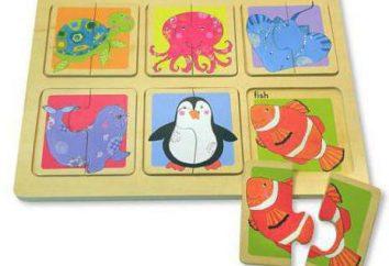 Quali sono i puzzle per minori di 2 anni?