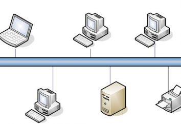 Las redes de computadoras: las principales características, clasificación y principios de la organización