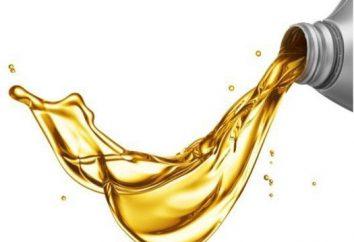 Che tipo di olio versato in l'uomo a terra? criteri di selezione