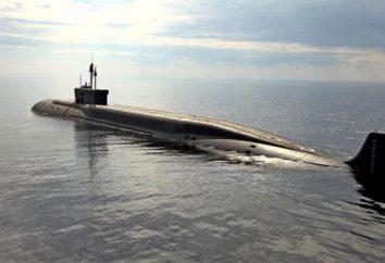 """""""Stan-6"""" (system ocean uniwersalna broń): projektowanie i cel"""