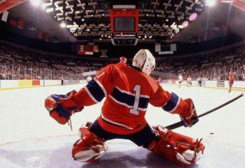 sia che si tratti di ghiaccio, o dove è la città natale di hockey?