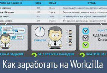 """Site """"Vorkzilla"""" – informacje zwrotne od klientów i wykonawców"""