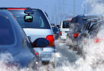 Os problemas ambientais do planeta. problemas ambientais globais do planeta: exemplos