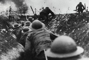 La prima guerra mondiale: chi con chi ha combattuto? Gli obiettivi delle potenze belligeranti. Che ha combattuto russo?