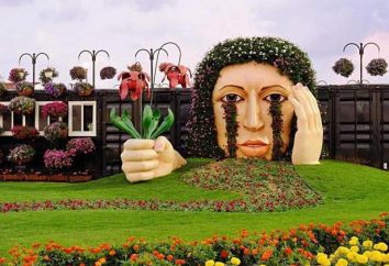 Dubai Miracle Garden: Description de