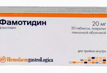"""De lo que ayuda """"famotidina""""? Instrucciones de uso, bienes"""