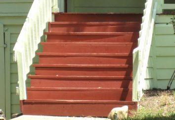 Quelle devrait être la peinture pour le bois extérieur