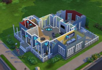 Sims 4: recensioni di lettori e critici, codici