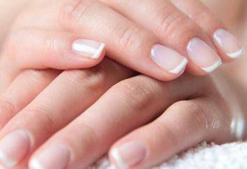 ¡Haga una manicura elegante simplemente! Manicura francesa en las uñas cortas