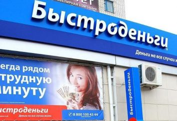 """Mikropożyczek: Liczba dłużników. """"Bystrodengi"""" – MFI"""