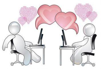 "Dating-Website ""TEAM"": Feedback über das Projekt"