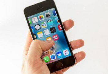 """¿Cómo hacer dinero en el """"iPhone"""": un buen consejo"""