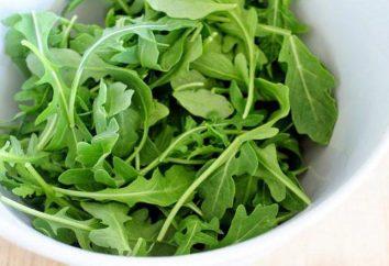 Como preparar salada com rúcula e atum?