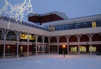 Teatro Juventude em Fontanka. História da criação