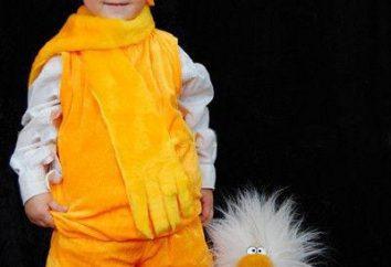 Como fazer um traje Bun para um menino com as mãos: Plantas e recomendações