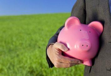 déduction fiscale sociale – et pourquoi ne pas profiter de cette occasion?