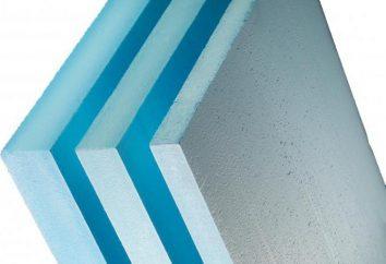 polystyrène Plaques: Propriétés, caractéristiques d'application