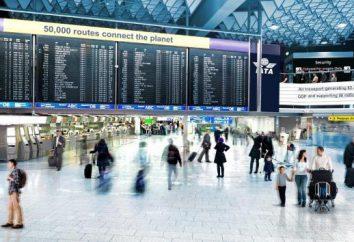 Se siete in ritardo per un aereo, che cosa fare? aviaturistov Informazioni