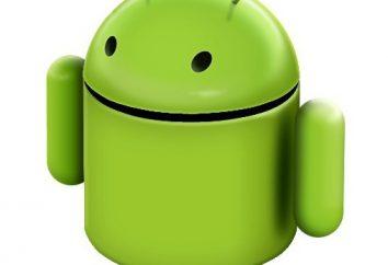 """Como faço para ligar a Internet """"Android""""? Como faço para instalar o Internet sobre o """"Android""""?"""