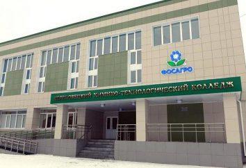 Chemical Technology College (Cherepovets): Description