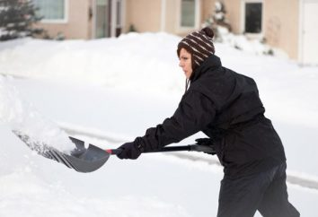 pala de nieve – un equipo indispensable en invierno