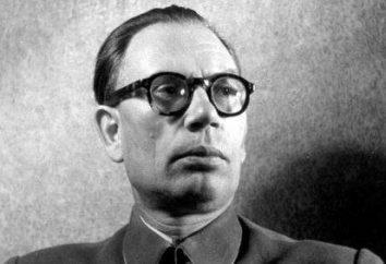 """Quem eram e que a guerra """"heróis"""" ROA e de outras unidades nacionais da Wehrmacht"""