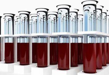 interpretazione autonoma dei risultati delle analisi del sangue